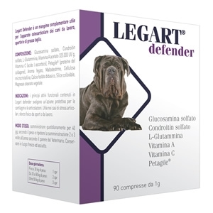 DDF Group - Legart Defender