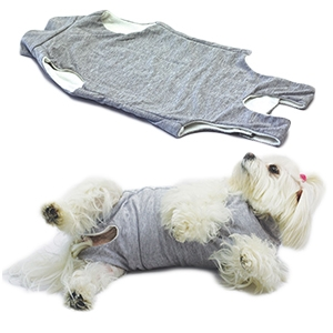 Fashion Dog - Cura Pets Body
