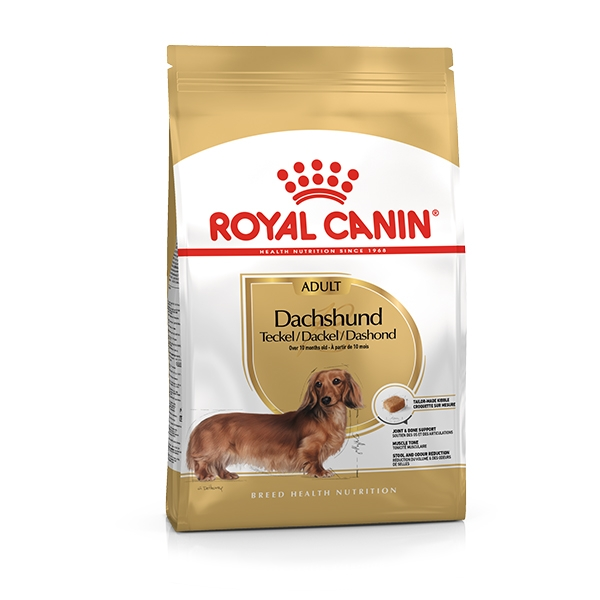 acquista l'originale salvare ordinare on-line Royal Canin - Bassotto Dachshund